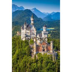 Купити Карбоновий настінний обігрівач ТРІО Замок